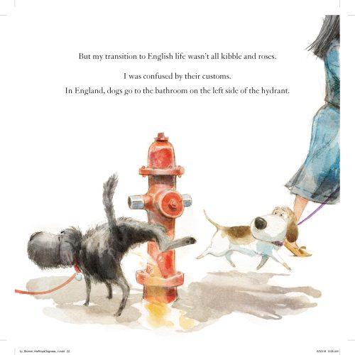 dog at hydrant